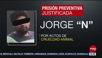 FOTO: Dictan prisión preventiva contra sujeto por maltrato animal, 14 noviembre 2019