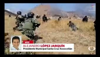 Foto: Video Abejas Saben Nadar 19 Noviembre 2019