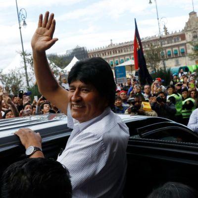 Morena organiza colecta en apoyo a Evo Morales