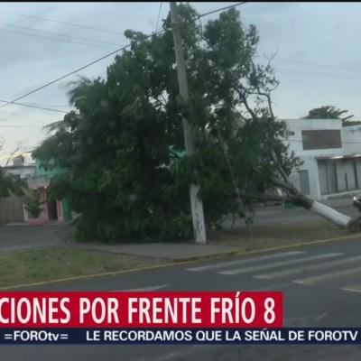 Frente frío 8 deja un muerto en Veracruz