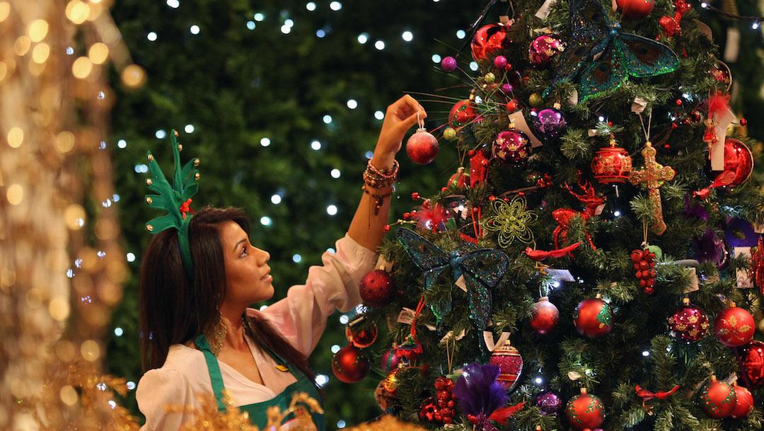 Foto ¿Cuándo debe ponerse el árbol de Navidad? 21 noviembre 2019