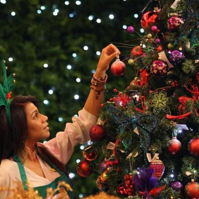 ¿Cuándo debe ponerse el árbol de Navidad?
