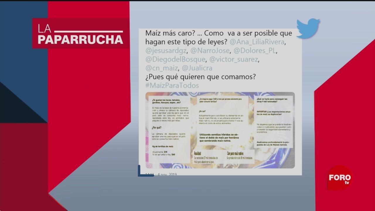 Foto: Precio Tortillas Aumentará Protección Maíz Nativo Noticias Falsas 5 Noviembre 2019