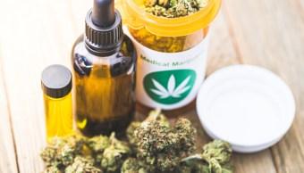 Imagen: La aprobación de los dos medicamentos a base de cannabis se logró gracias a la modificación de una ley en noviembre de 2018, 11 de noviembre de 2019 (Getty Images, archivo)