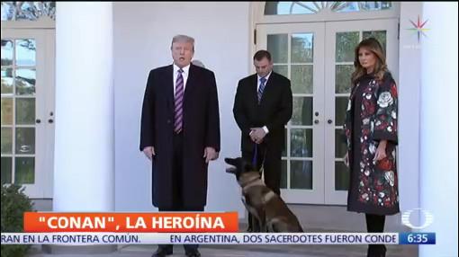 Trump condecora a 'Conan', perro héroe que halló a líder de ISIS