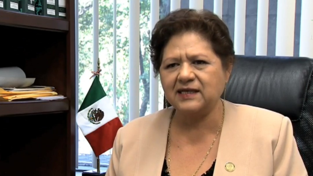 Foto: Acusan a diputada de Morena de usar terrenos ejidales para construir camino