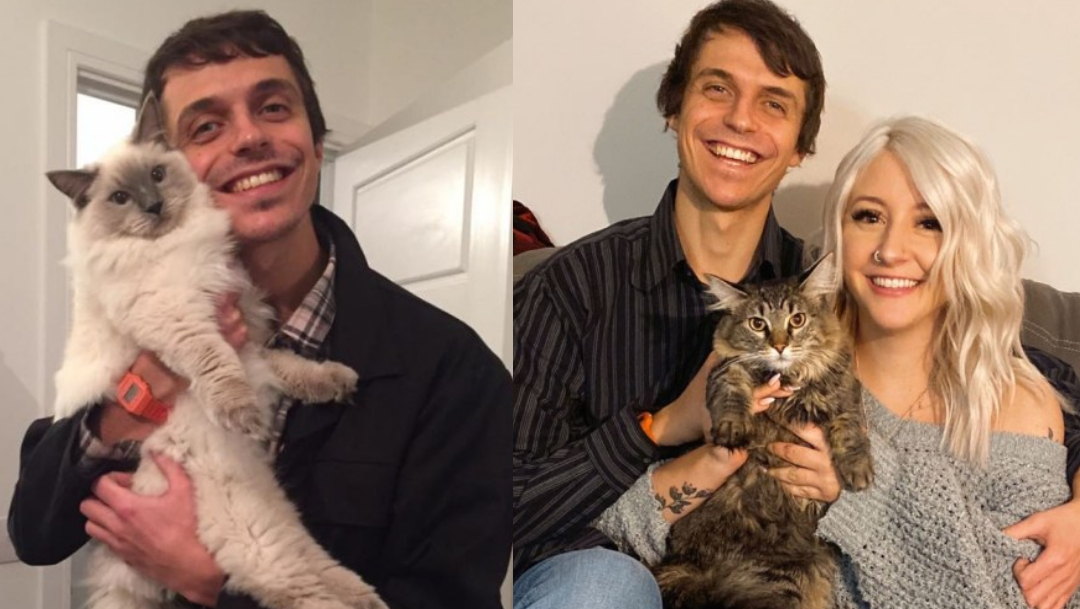Joven da like a foto de gato y encuentra su alma gemela