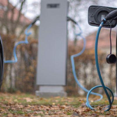 Gobierno federal buscará crear autos eléctricos mexicanos