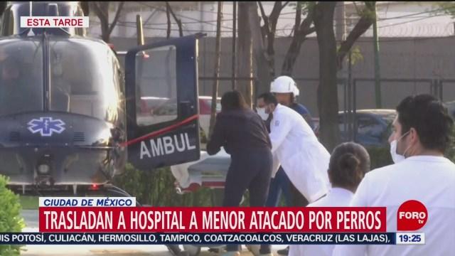 Foto: Detienen Personas Ataque Perros Pitbull Tlalpan 9 Diciembre 2019
