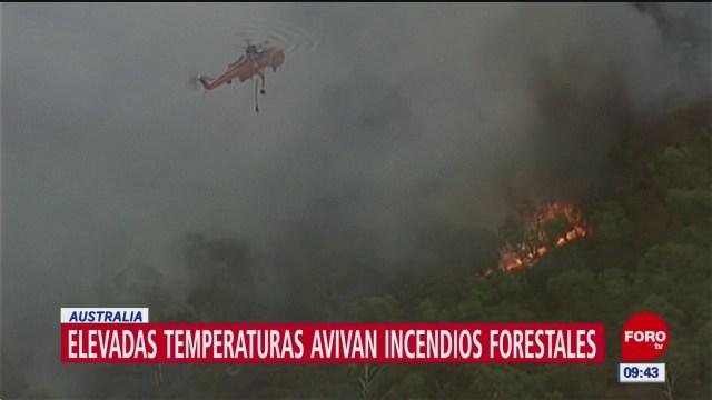 Foto: elevadas temperaturas avivan incendios forestales en australia