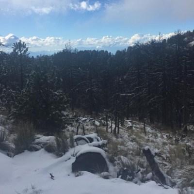 Nevado de Colima se pinta de blanco, con hasta tres centímetros de nieve