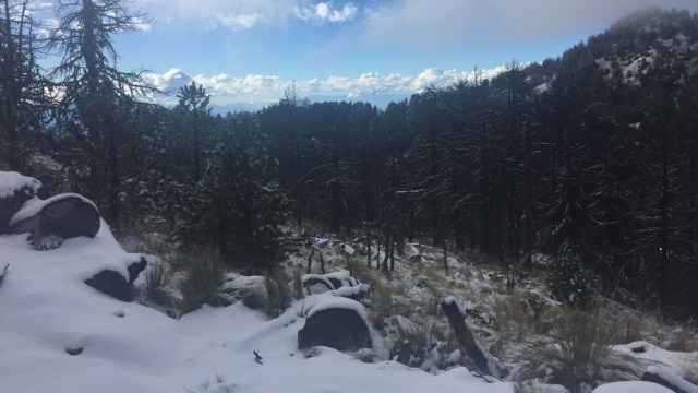 Nevado de Colima se pinta de blanco, 21 de diciembre de 2019 (Protección Civil Jalisco)