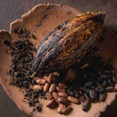 Chocolate y sus propiedades medicinales: los beneficios para la salud
