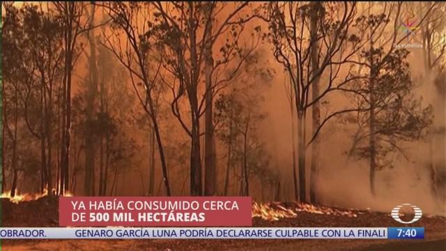 en australia combate a incendios forestales es insuficiente
