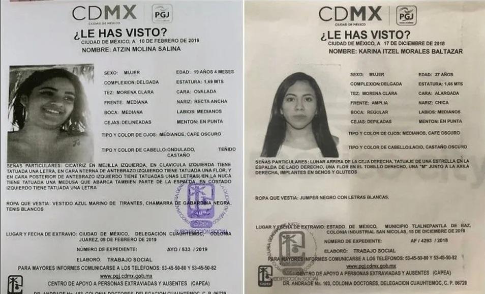 Foto: Fichas de desaparición de Atzin Molina y Karina Itzel, PGJ