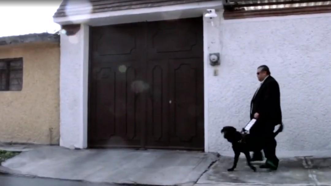 Foto: Labor de perros guía no siempre es valorada por los humanos