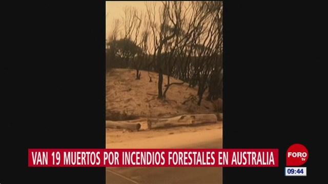 Foto: miles son rescatados en playas de australia por los incendios forestales, 3 de enero de 2020