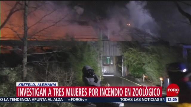 Foto: tres mujeres confiesan haber causado incendio de zoologico en alemania