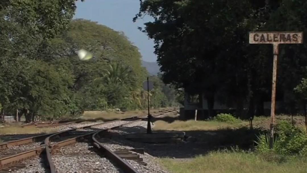 Hallan 12 osamentas en predio de Tecomán, Colima