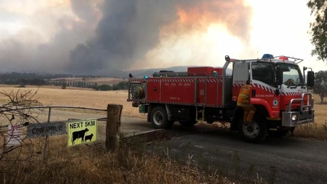 Lluvia ayuda en combate de incendios forestale en Australia