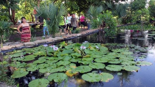 FOTO Vecinos se unen y convierten basurero en parque (Diario de Yucatán)