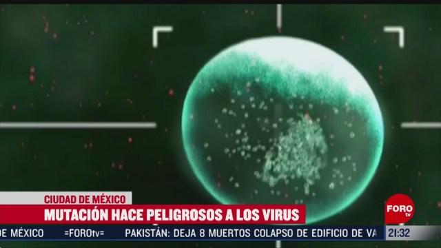 Foto: Mutación Hace Peligrosos Virus 11 Febrero 2020