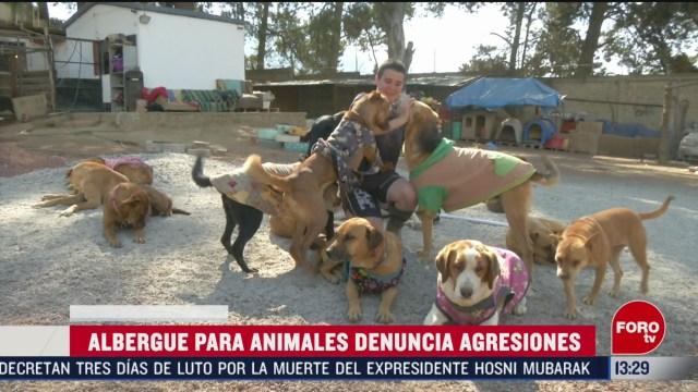 FOTO: refugio de animales en edomex es constantemente amenazado