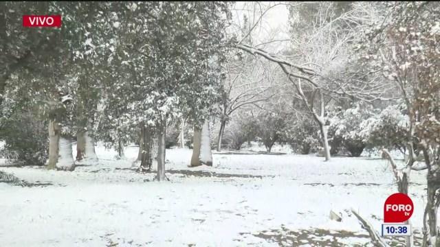 se registra nevada en chihuahua