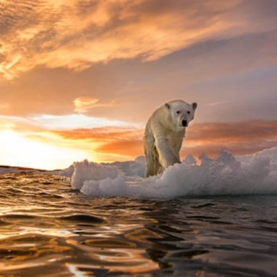 Científicos rusos alertan reducción crítica de la capa de ozono del Ártico