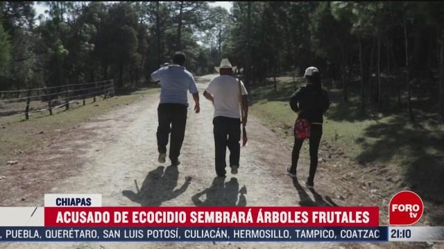 FOTO: 7 marzo 2020, responsable de ecocidio se compromete a sembrar 100 arboles para evitar ser encarcelado