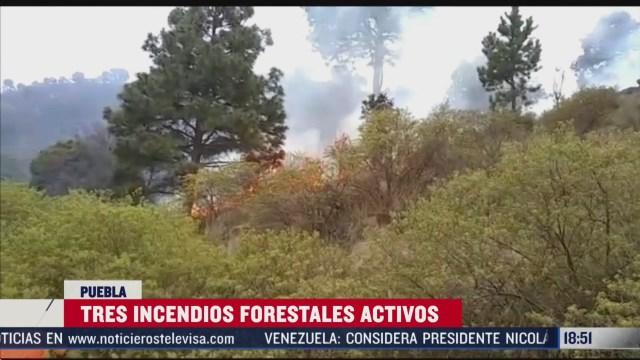 FOTO: se registran tres incendios forestales en puebla