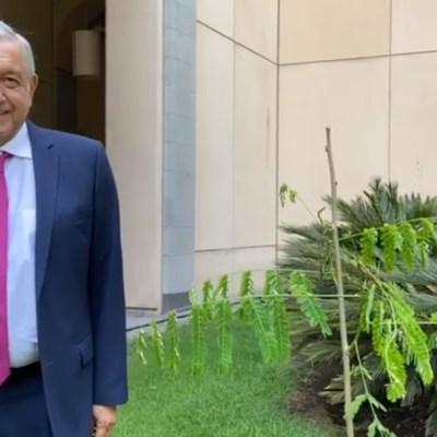 AMLO planta árboles en jardines de Palacio Nacional