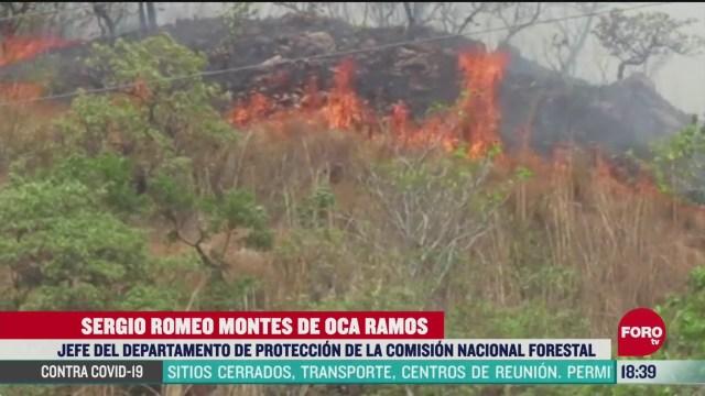 FOTO: continuan los incendios forestales en chiapas