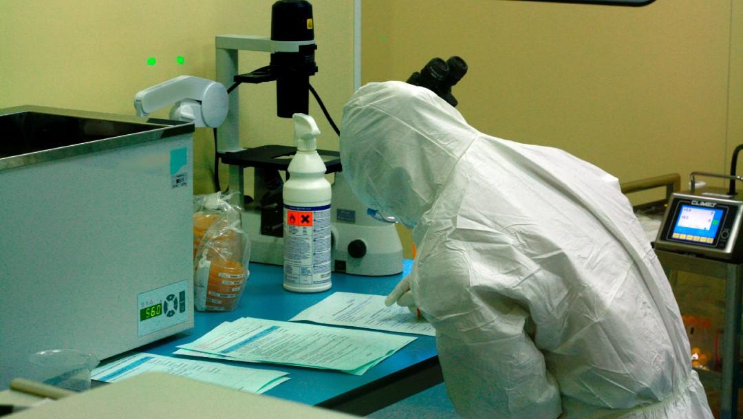 Foto: Italia probará en humanos una vacuna contra el coronavirus