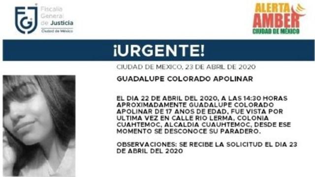 Foto: Activan Alerta Amber para localizar a María Saraí Méndez Ponce, 24 abril 2020