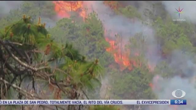 se intensifican incendios forestales en oaxaca