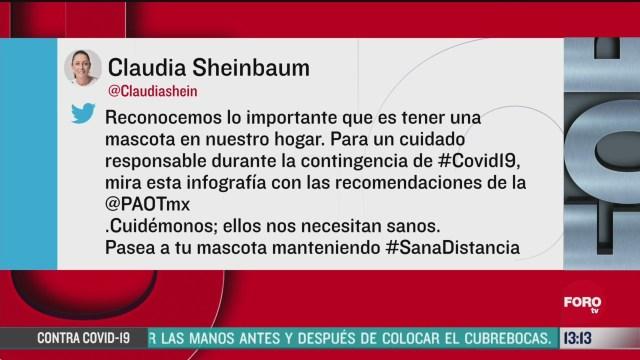 FOTO:12 de abril 2020, sheinbaum da recomendaciones para las mascotas en tiempos del coronavirus