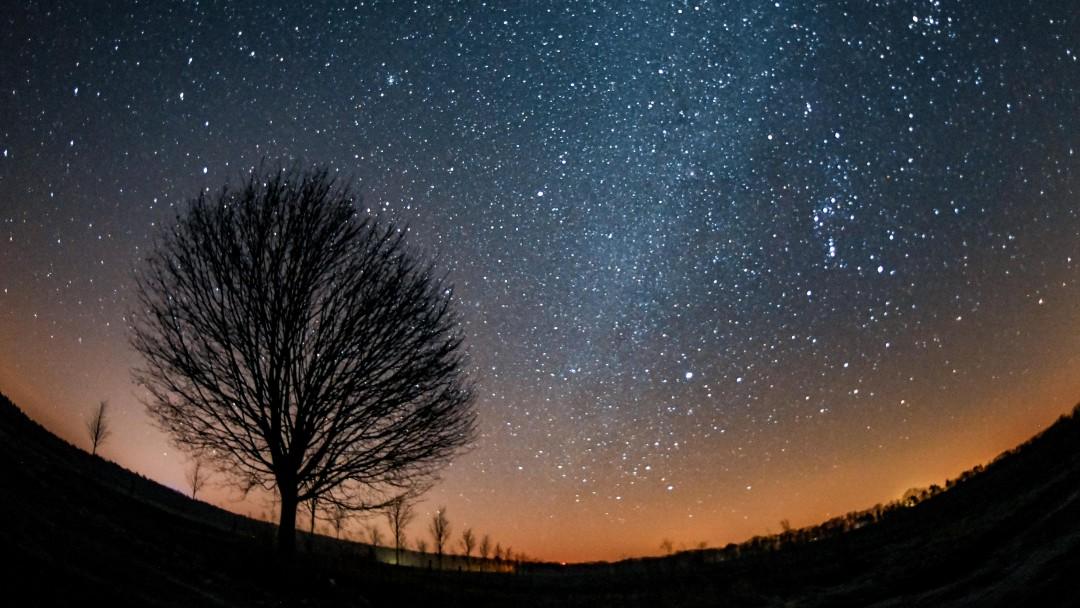 Cielo estrellado en Märkisch-Oderland, Alemania. Getty Images