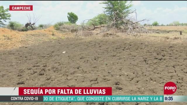 FOTO: 23 de mayo 2020, cerca del 70 de las lagunas se encuentran secas en calakmul campeche