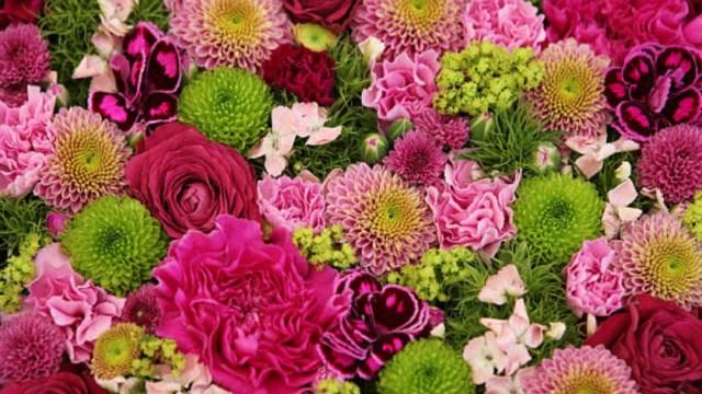 Las flores no transmiten el COVID-19 por sí mismas: Especialistas
