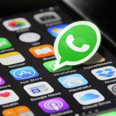 WhatsApp: Así puedes recuperar tus contactos perdidos