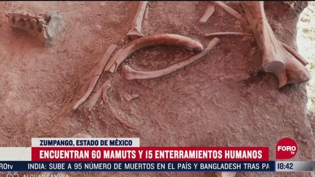 FOTO: hallan restos de 60 mamuts en zumpango edomex