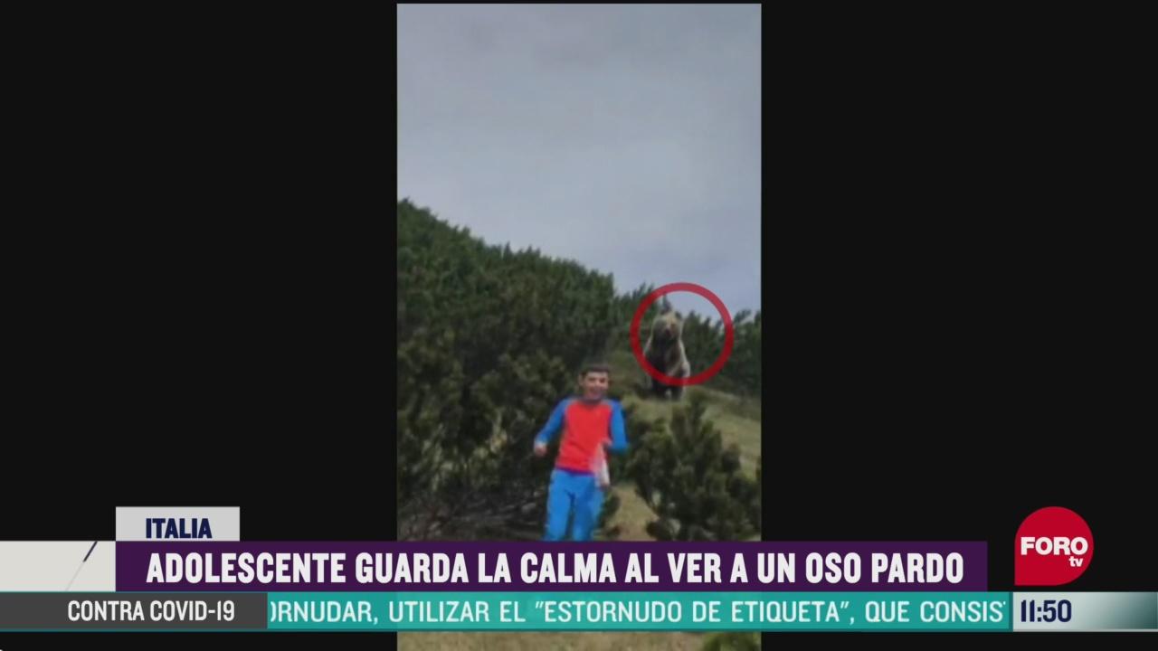 oso sigue a nino durante excursion en italia