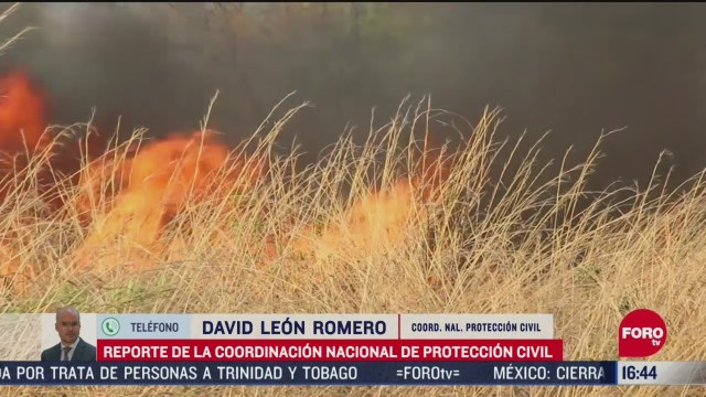 FOTO: se registran incendios forestales en cinco estados del pais