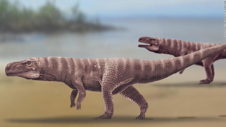 Cocodrilos caminaban en dos patas hace 120 millones de años – Noticieros  Televisa