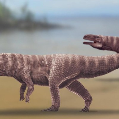 Cocodrilos caminaban en dos patas hace 120 millones de años, revela estudio