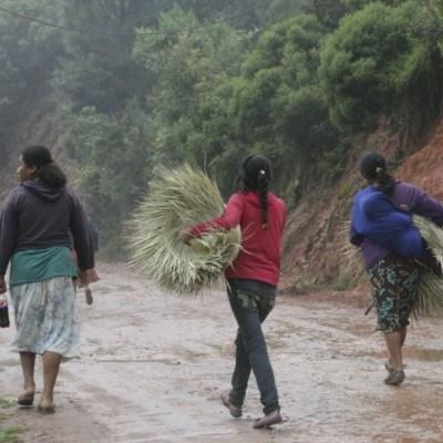 Baja envío de remesas desde EEUU y afecta a familias en la montaña de Guerrero