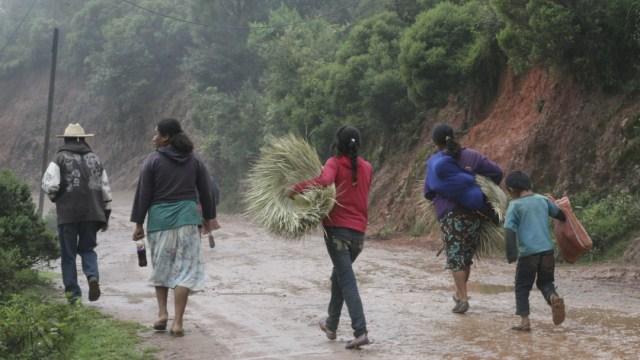 Baja de remesas afecta a familias en montaña de Guerrero