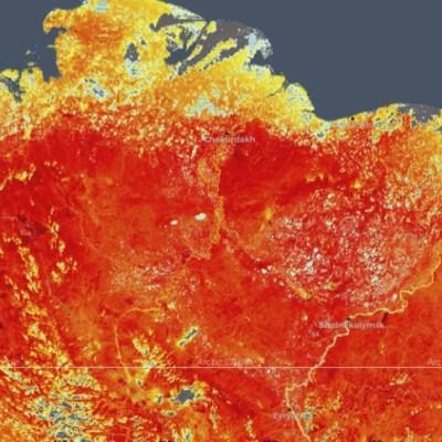 Ola de calor en Ártico siberiano alarma a los científicos