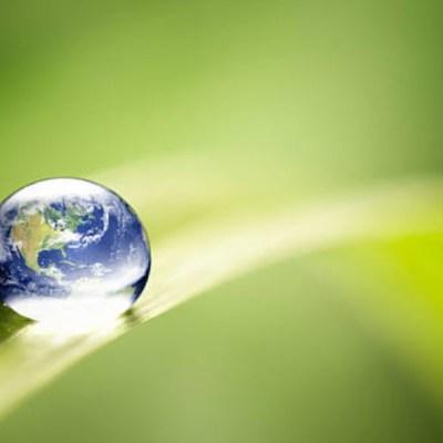 Día Mundial del Medio Ambiente 2020: Es la 'hora de la naturaleza' tras el COVID-19, asegura la ONU
